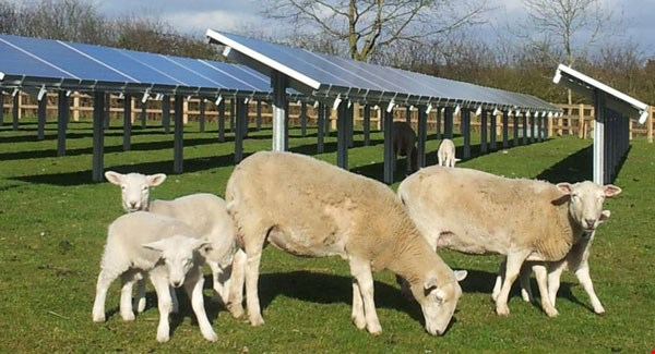 Plans for €60m investment in clare and kerry solar farms