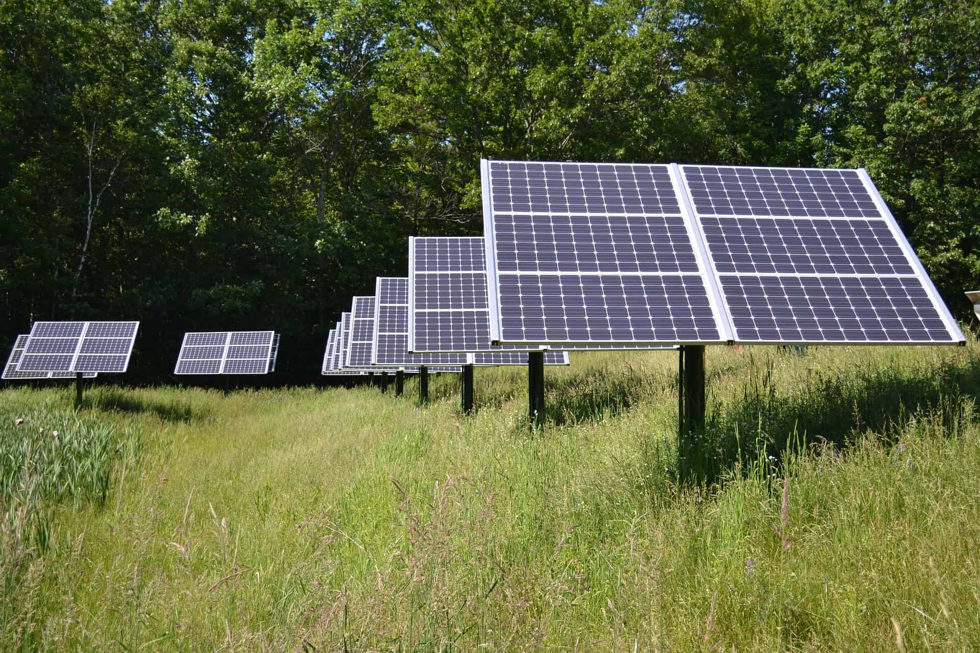 RESS Renewable Energy Auction